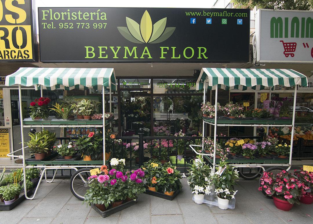 Floristería en Marbella Beyma Flor